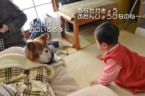 DSC_4539