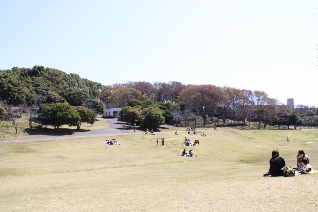 出っけぇ公園