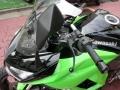 Ninja1000 ミラー3