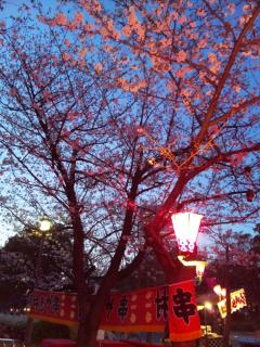 04.04.2011.大阪
