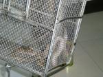 密室蛇事件