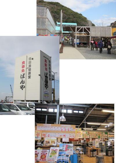 2011-1-29-1.jpg