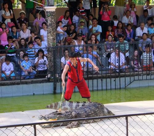 1-zoo 09