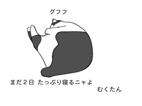 2010 01 02
