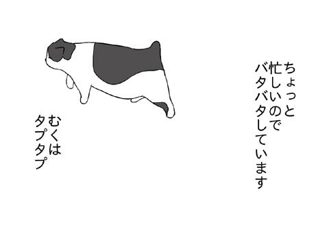 2010 08 10