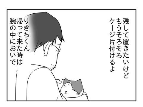 2010 11 10 4