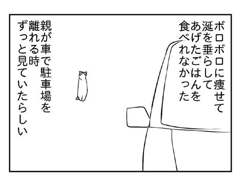2010 12 29 06