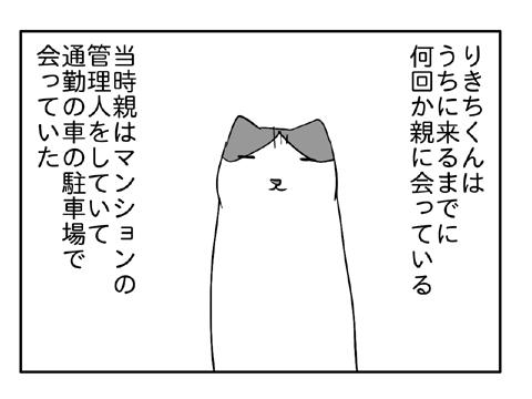 2010 12 29 05