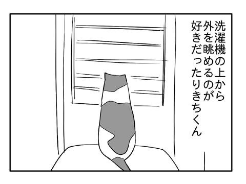2010 12 29 01