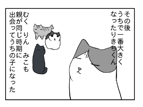 2010 12 29 08