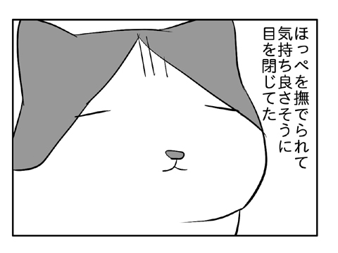 2010 12 29 15