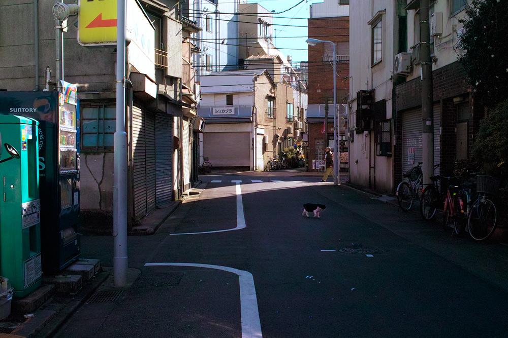 DP2清川01