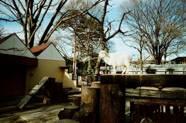 2011-01-1317-17-38.jpg