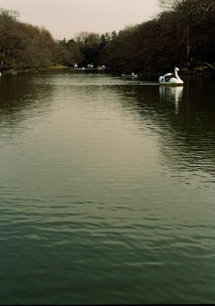 2011-01-1317-38-05.jpg