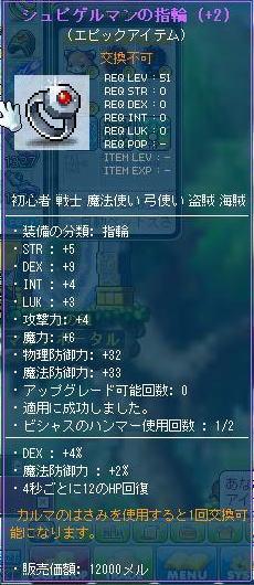 maple_20130215-10.jpg