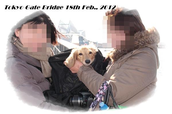 東京ゲートブリッジ 2012-2