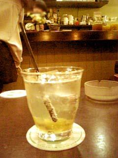 avocafe キウィ酢カッシュ