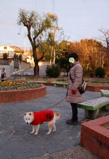 赤マント 公園