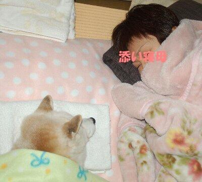 母添い寝b