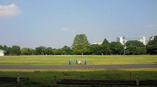 緑の文化ゾーン (1)