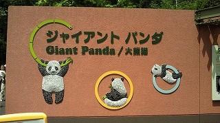 パンダ看板