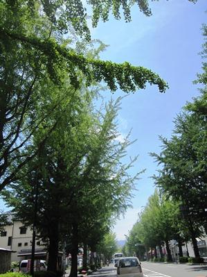 20110623天晴1