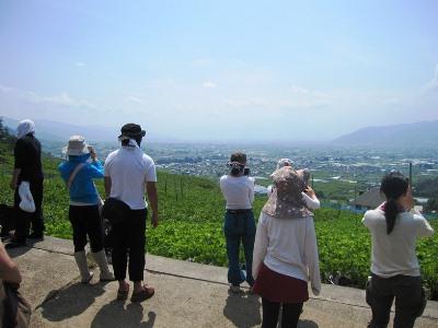 2011年7月2日菱山ぶどう畑ヨガ (11)