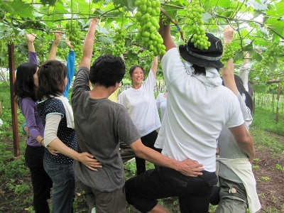 2011年7月2日菱山ぶどう畑ヨガ (32)