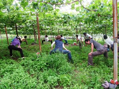 2011年7月2日菱山ぶどう畑ヨガ (28)