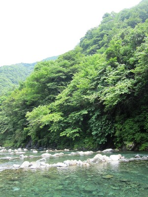 20110703神之川 (16)