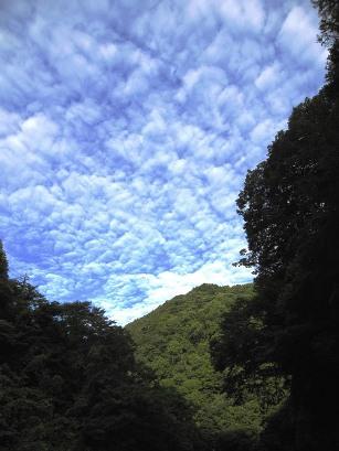 20110808青根 (18)