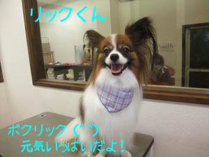 20100331_1725913.jpg