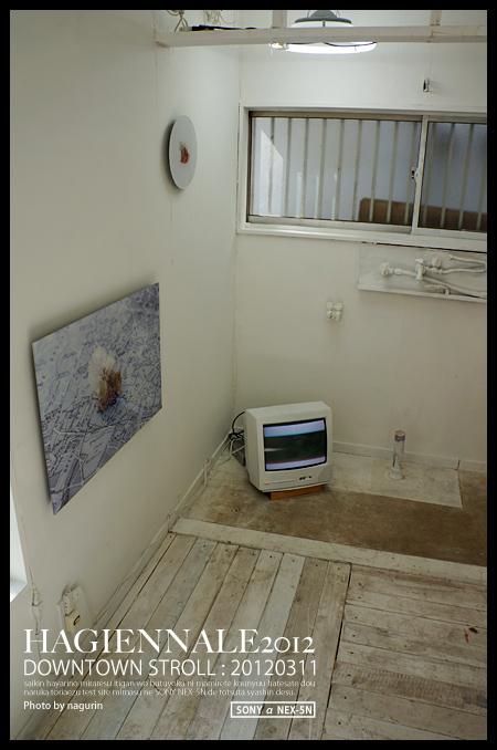 5DSC00864.jpg