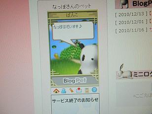 PC130379.jpg
