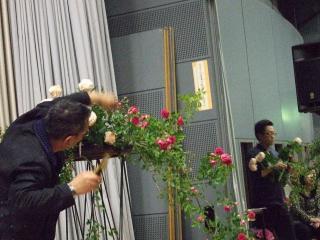 2011花の 018
