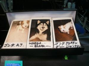 2009-3-25ナル ブログ用 015