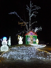 桜十字病院のクリスマスイルミネーション♪