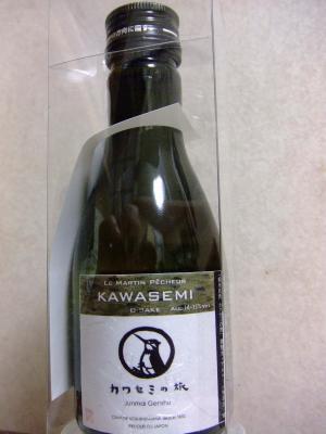 2011カワセミの旅 001-1