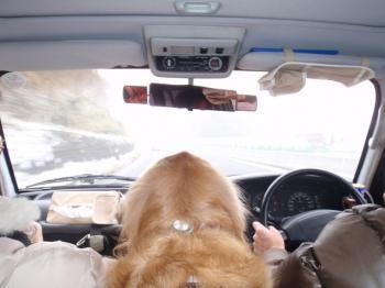 ドライブ中!