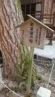 伊香保神社12