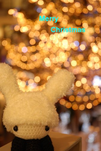 christmas13-15.jpg