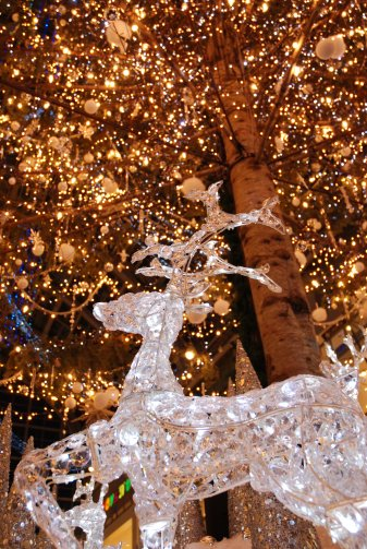 christmas13-9.jpg