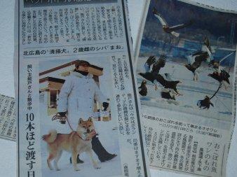 newspaper16-1.jpg