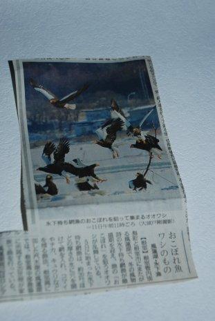 newspaper16-2.jpg