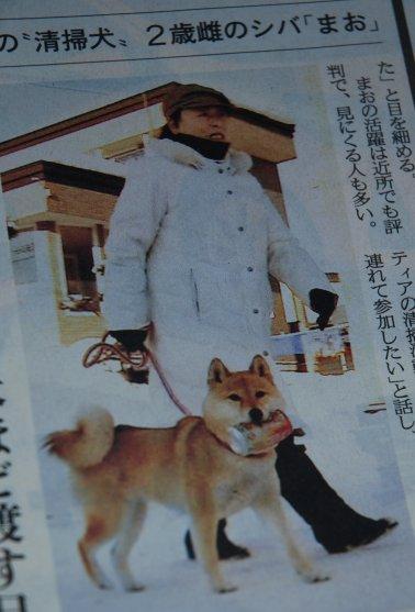 newspaper16-3.jpg