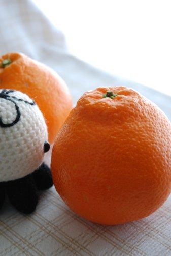 orange14-4.jpg