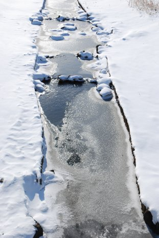 winter16-1.jpg