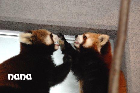 zoo18-83.jpg