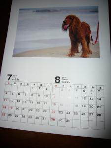 09.12.18カレンダー3