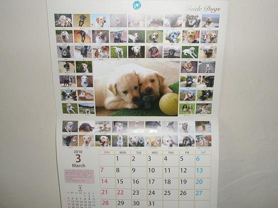 盲導犬カレンダー